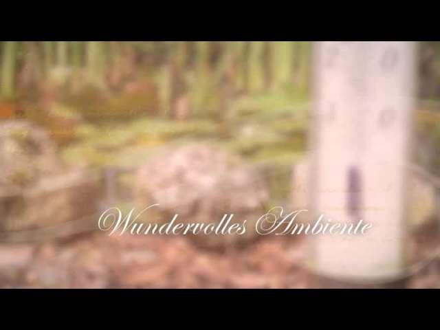 Video 1 ADVENT-WOHLFAHRTSWERK Seniorenheim Uelzen gGmbH