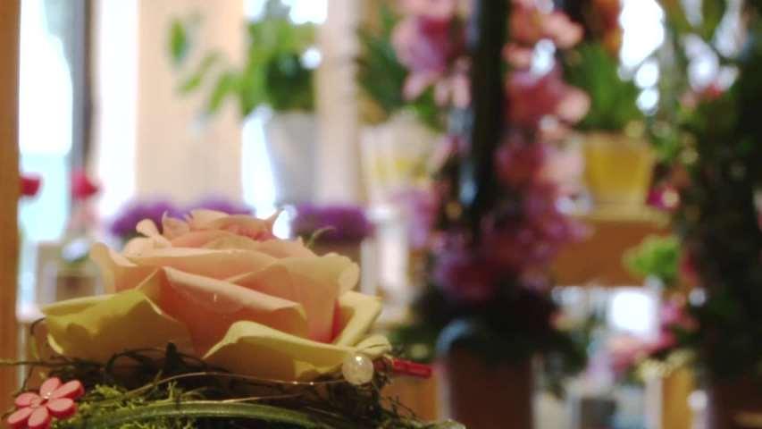 Video 1 Blumen- u. Friedhofsgärtnerei Schmid GmbH