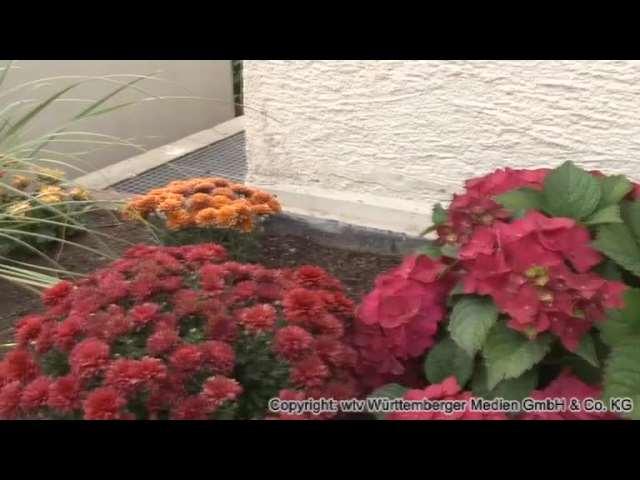 Video 1 Garten- und Landschaftsbau Richter & Richter GmbH & Co. KG