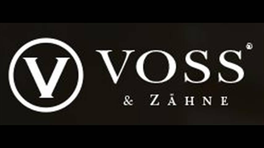 Video 1 Voss & Zähne Zahnmedizin Zentrum Leipzig Dr.med.dent. Jens Voss