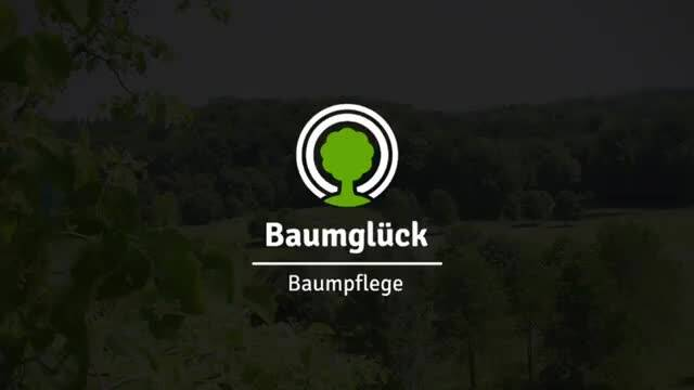 Video 1 Baumglück Baumpflege GmbH