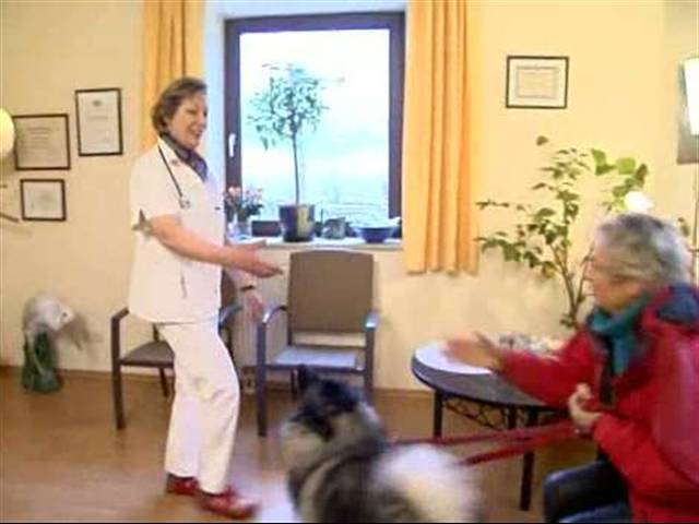 Video 1 Lindner Evelin C. Dr.med.vet. Tierärztin