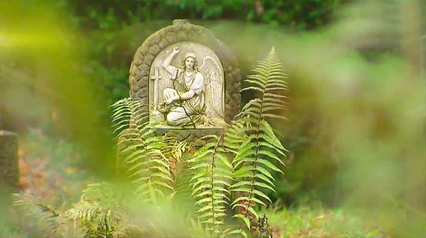 Video 1 Bestattung Bestattungsinstitut Denk TrauerHilfe GmbH