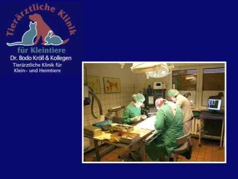 Video 1 Tierklinik Dr. Bodo Kröll & Kollegen