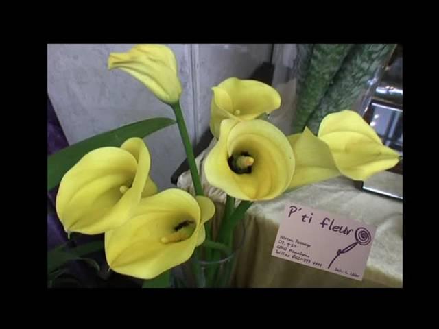Video 1 Blumen P'ti fleur Inh. Gudrun Lüder