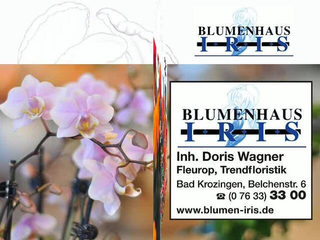 Video 1 Iris Blumenhaus