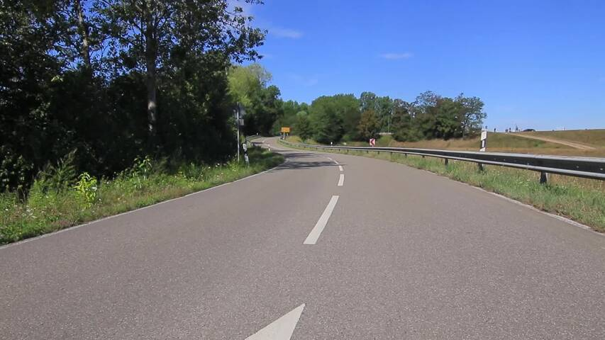 Video 1 Riebold