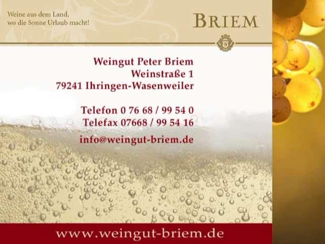 Video 1 Briem Weingut