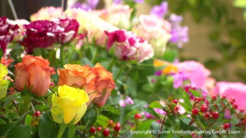 Video 1 Blumen Klumpen Hans