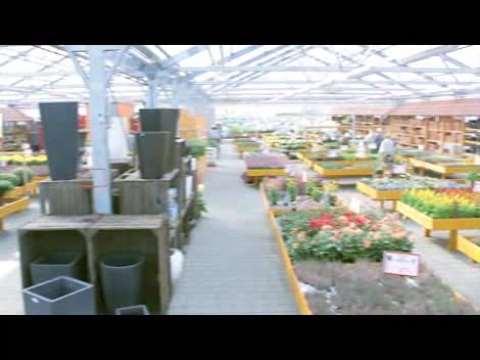 Video 1 Peters Blumen u. Pflanzen GmbH