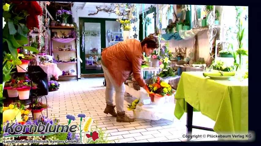 Video 1 Blumen Aymans